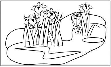 木彫図案集|あやめ-01|サンプル画像